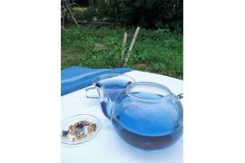 藍のハーブティー&藍の青いお茶セット