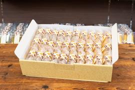 カットカステラ30個入化粧箱:4298円