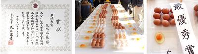 白鳳卵:30個入+増量*コロナ支援専用【10/26〜11/01間に当店から発送】