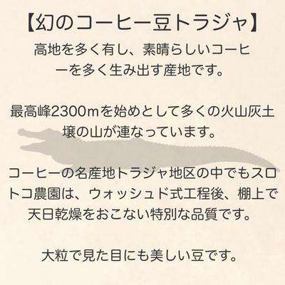 1 トラジャ/ゲイシャ(各200g)受注焙煎コーヒー豆【豆/粉】コーヒーカップ30-40杯分